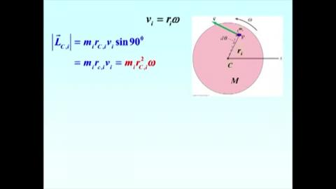 Orbital and spin angular momentum