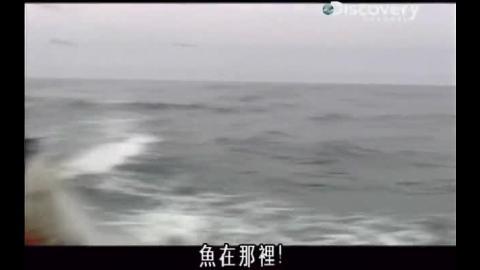 漁業流程.mp4