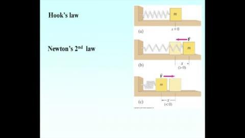 Equation of motion for SHM