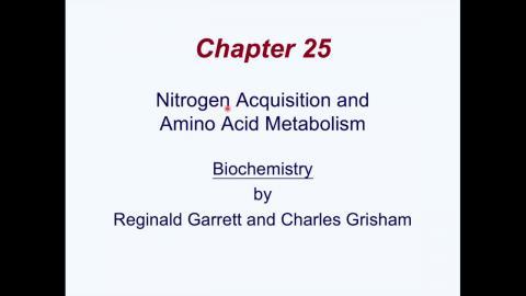 biochem.mp4