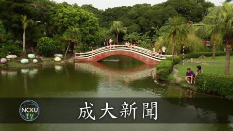 【影音】領養不棄養 流浪貓咪小屋(by外文108黃詠萱)