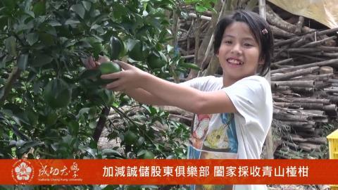 【影音】加減誠儲果樹認養 開創綠色未來