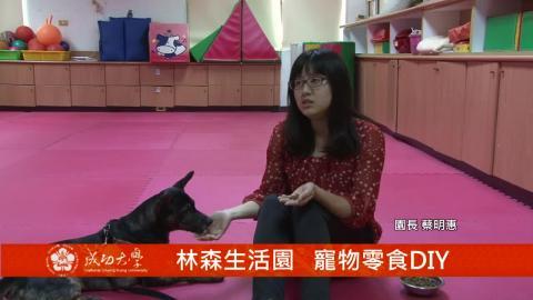 【影片】林森生活園 寵物零食DIY