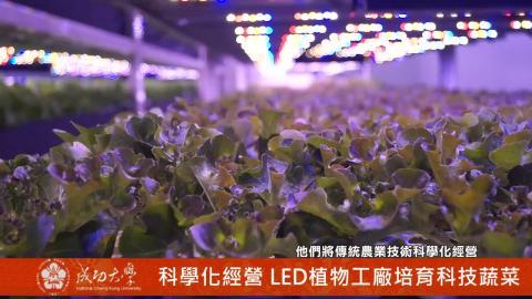 【影音】無農藥無污染 蔬食樂打造新科技蔬菜