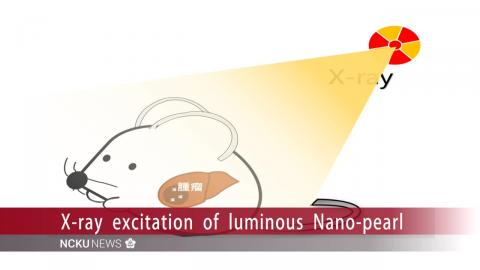 "【Video】Luminous Nano-pearl"": Medical breakthrough to accurately detect tumors"