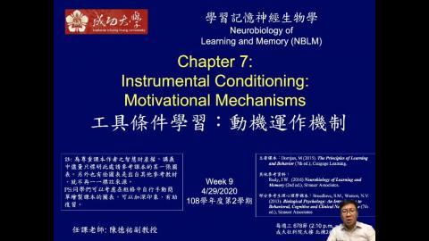 學習記憶神經生物學 Ch7 Operant(3) (2020-04-29,第一節)