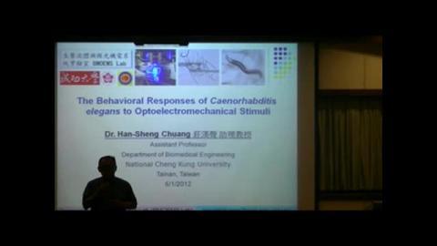 線蟲對光機電刺激的多重行為反應