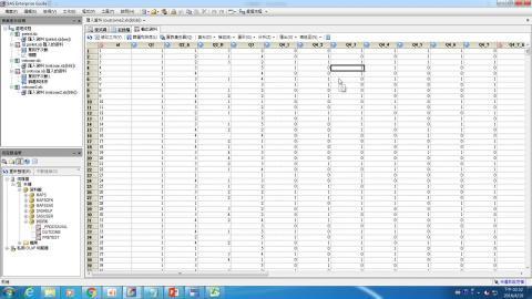 資料科學家的基石,用SAS EG寫論文(6 )