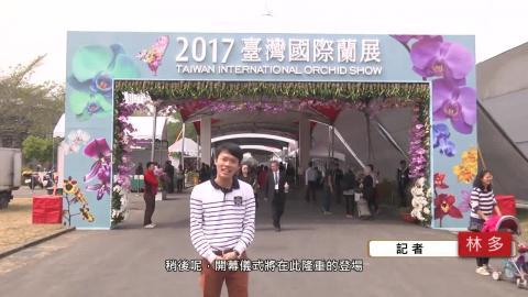 【影音】國際蘭展登場 總統親臨開幕典禮  (交管107林多 採訪報導)